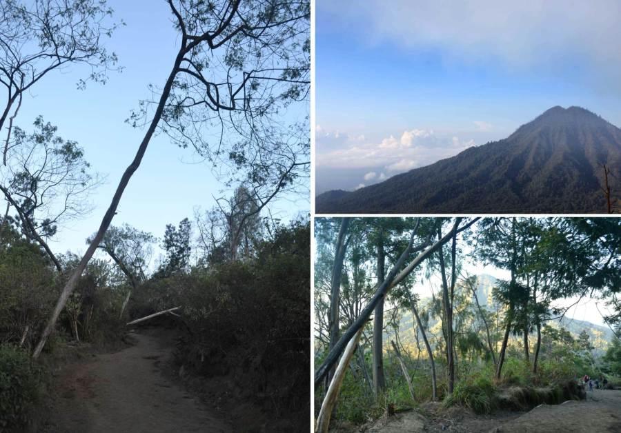 track jalan menuju puncak yang cukup lebar