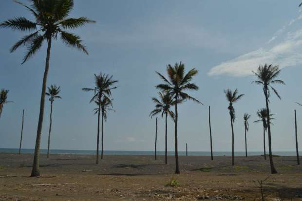 pantai marinir