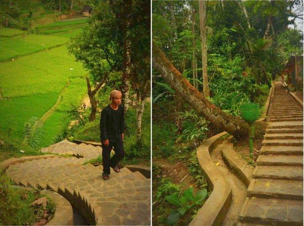 439 anak tangga dengan saluran yang bersahabat dengan pohon.