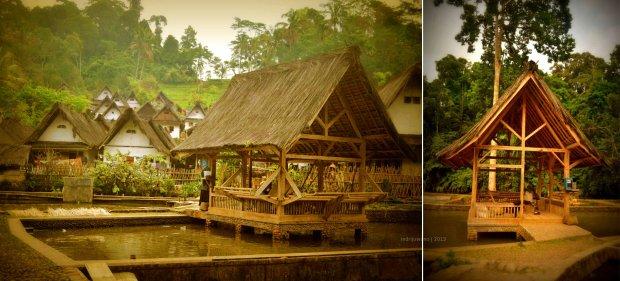 saung luar untuk menyiangi padi