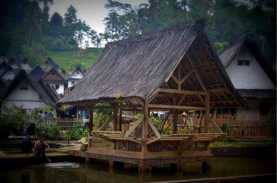 kolam ikan mas