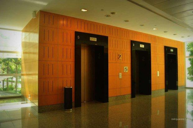 lift lobby berlapis kayu