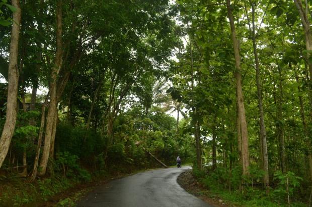 koridor desa babung, gunungkidul