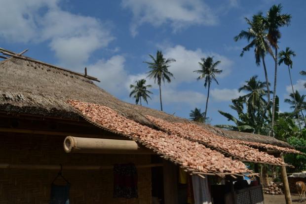 sebagian atap rumah di desa adat senaru