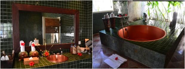 kamar mandi hijau