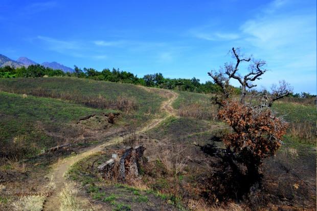 jalur pendakian yang kering