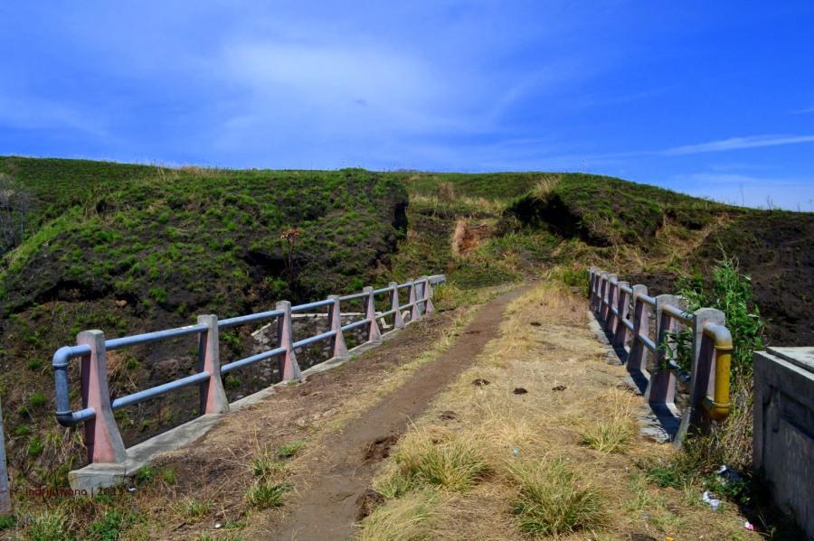 jembatan berumput