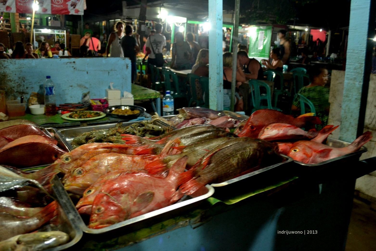 fish food market