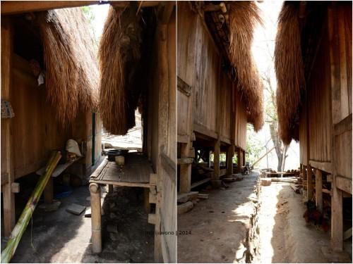 lorong di antara dua rumah
