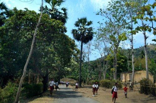 anak sekolah desa yang baru pulang di tengah hari