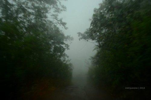 jalan berkabut dari ruteng
