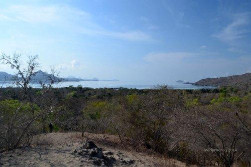 pulau-komodo-10-sulphurea hills