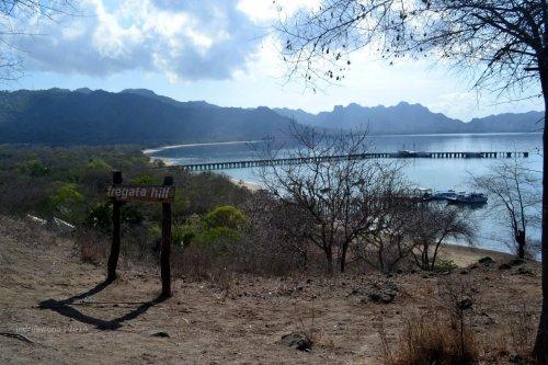 pulau-komodo-13-fregata hills