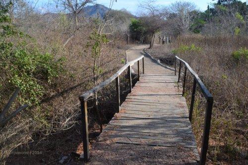 jembatan melintasi sungai yang kering