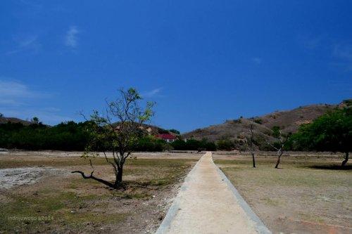 menyusur tengah padang pulau rinca