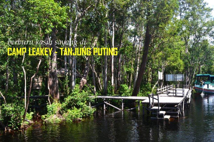0-tanjungputing-camp-leakey-jetty