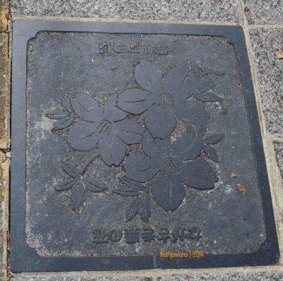 manhole cover di NAGASAKI, bergambar bunga