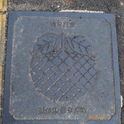 manhole cover di NAGASAKI, motif buah-buahan