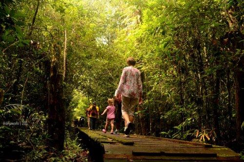 anak-anak yang ikut melintas hutan
