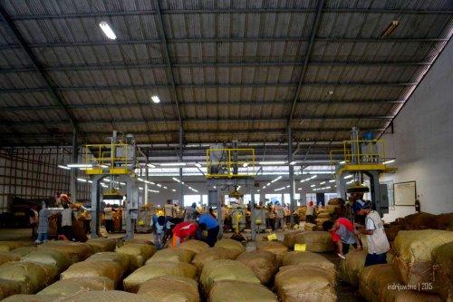 tembakau siap dikirim ke pembeli produk dari berbagai brand