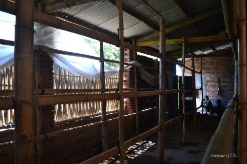 batang bambu tempat merangkai tembakau sebelum di-oven