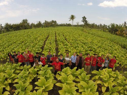tim jelajah tembakau lombok