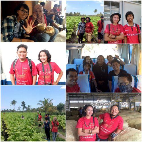 kolase-jelajah-tembakau-lombok