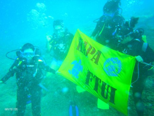 39-mandeh-sumatera-barat-bendera-dive-under-water