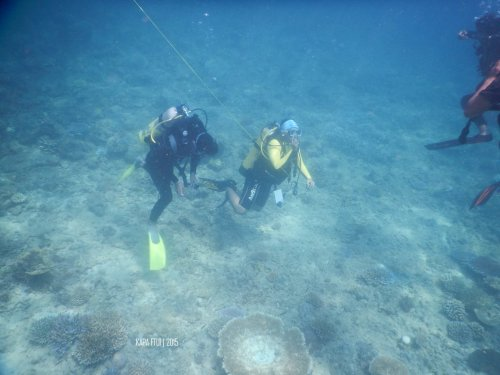 9-mandeh-sumatera-barat-dive-under-water