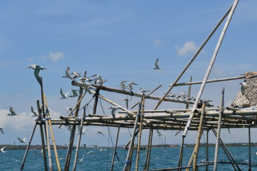 4-south-lombok-tanjung-luar