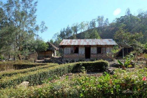 11-kupang-soe-fatumnasi-rumah-desa
