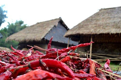 25-lombok-sembalun-lawang-desa-adat-beleq-blek-cabai