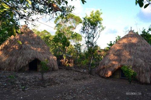 31-kupang-soe-fatumnasi-desa-adat-lopo