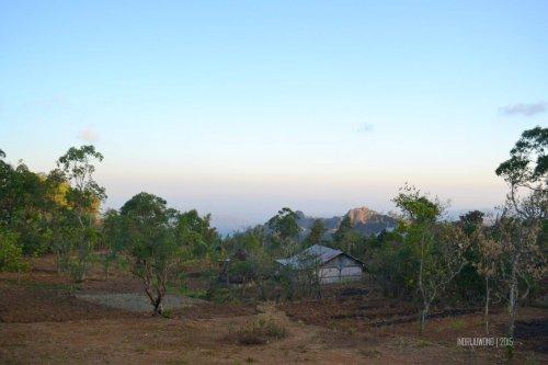 49-kupang-soe-fatumnasi-desa-adat-lopo