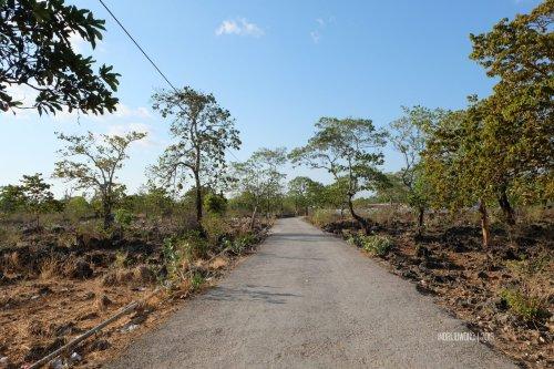 7-3-kupang-jalan-desa