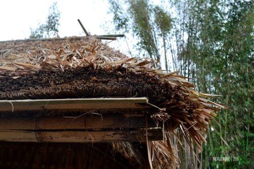 9-sembalun-lawang-desa-adat-beleq-blek-atap-rumah