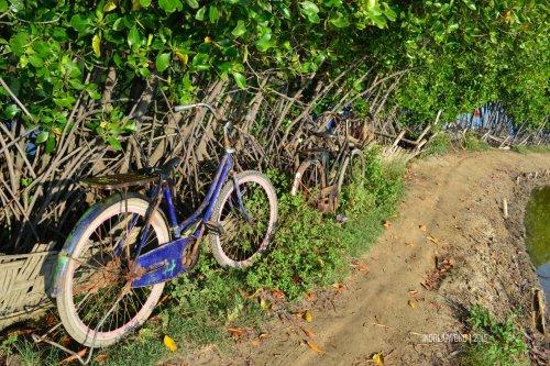 8-matahari-terbit-lasem-sepeda