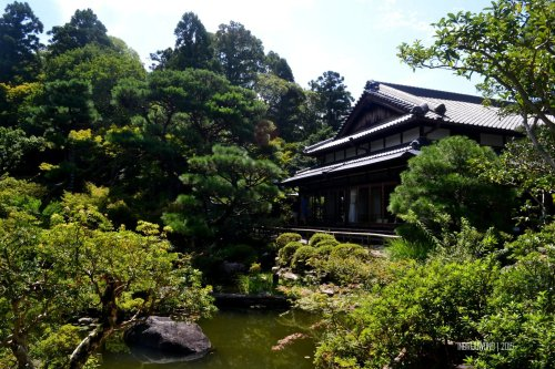 20-nara-japan-Yoshikien-Garden
