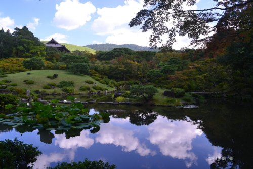 34-nara-japan-isuien-Garden