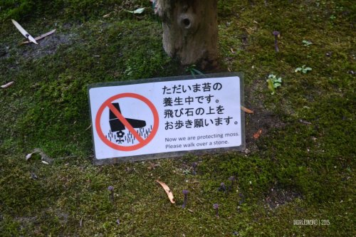 36-nara-japan-isuien-Garden