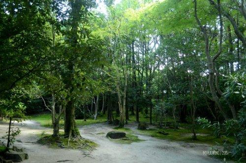 37-nara-japan-isuien-Garden