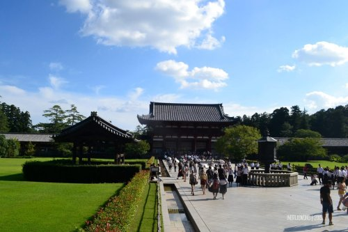 51-nara-japan-todaiji-temple