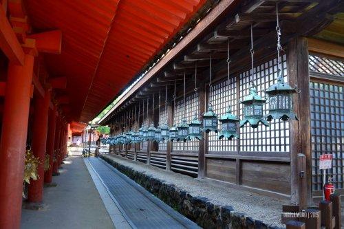 68-nara-japan-kasuga-taisha