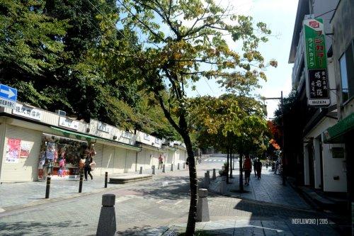 7-nara-japan-road-walk