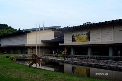 82-nara-japan-national-museum