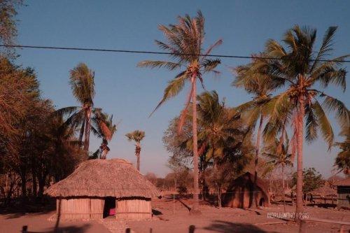 rumah-adat-timor-soe-10