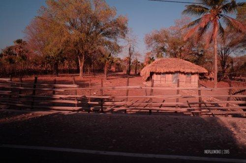 rumah-adat-timor-soe-12