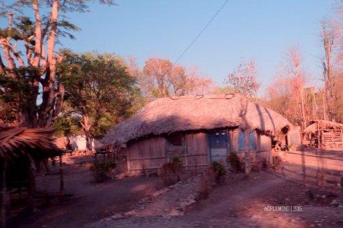 rumah-adat-timor-soe-13