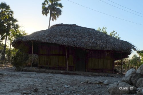 rumah-adat-timor-soe-16