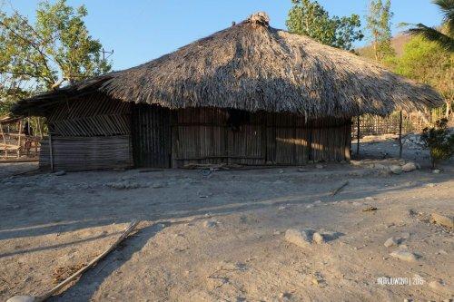 rumah-adat-timor-soe-17